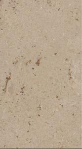 Braccato Veneziano Limestone