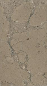 Bronze Limestone