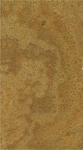 Onice Gold