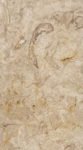 jerusalem Beige Limestone